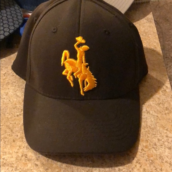 Men's Brown and Gold Wyoming Hat